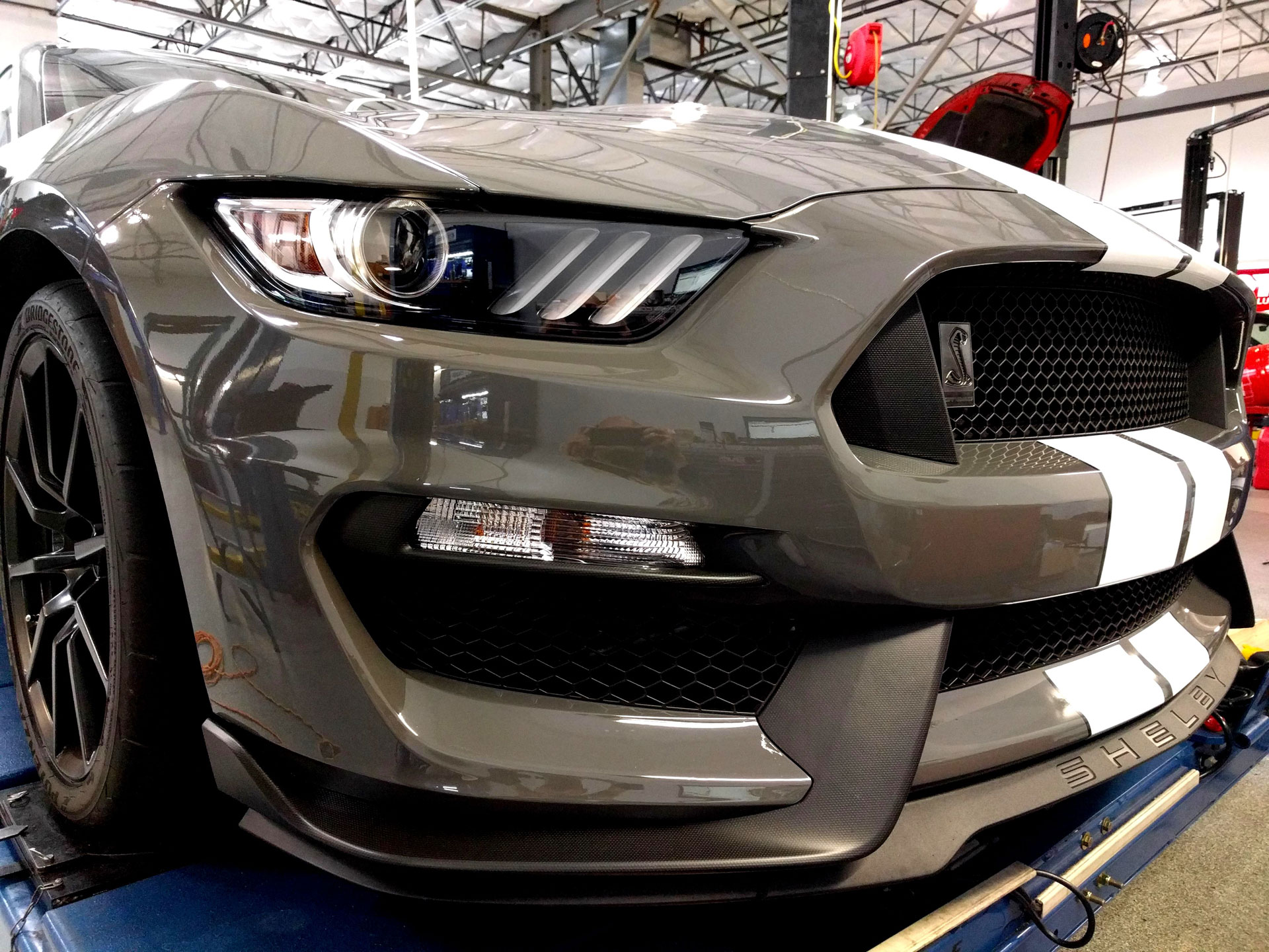 Ford Shelby GT350 Level 3 Paint Protection 3M Scotchgard Pro Series Clear Bra